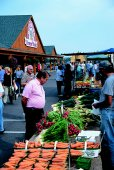 Farmer's Market at St. Jacobs - (Photo Credit: ©Courtesy of St. Jacobs Country)
